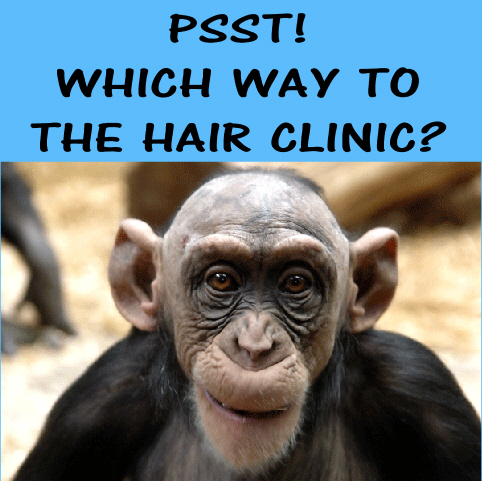 hair-clinic